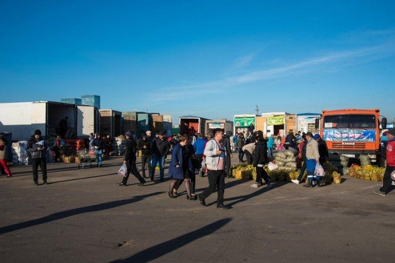 Сельхозпроизводители Карагандинской области представили свою продукцию жителям столицы Казахстана, фото-1