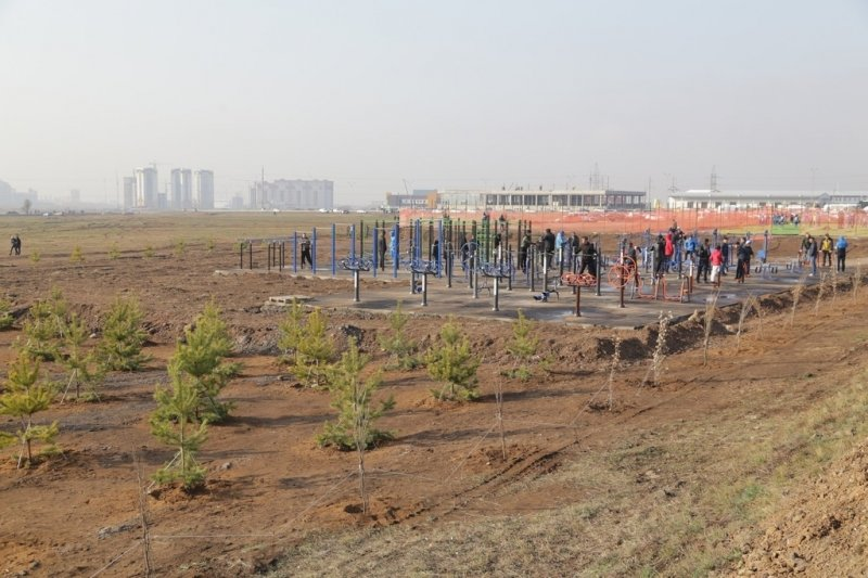 Более 6 тысяч деревьев высадили в Карагандинской области, фото-6