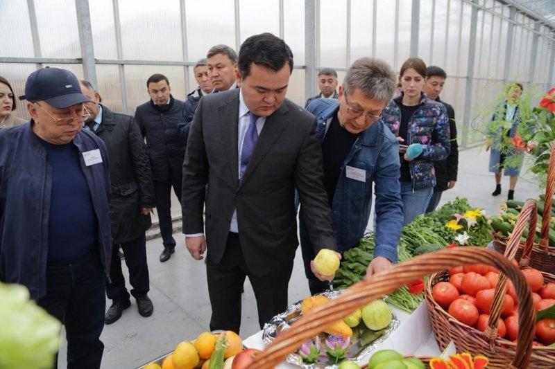 В Карагандинской области собран крупнейший урожай картофеля, фото-9