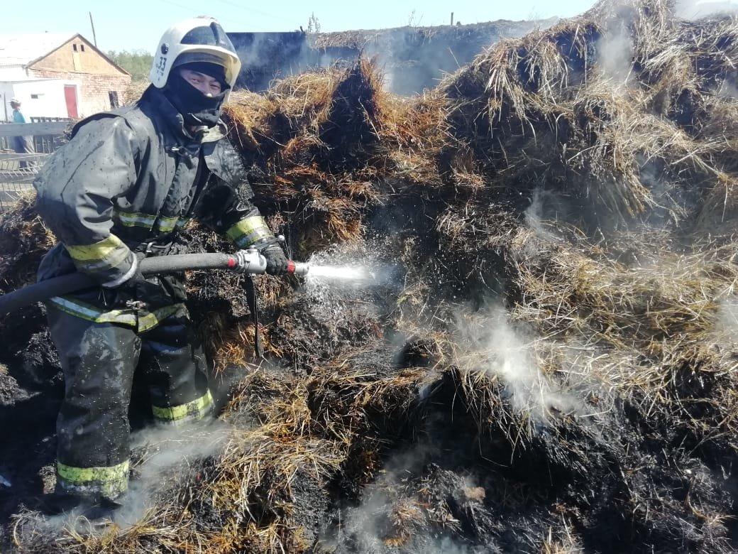 Более 500 тонн заготовленного сена сгорело за пять дней в Карагандинской области, фото-1