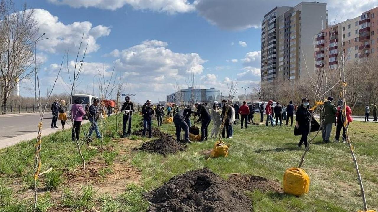В акции по озеленению приняли участие руководители области и города, члены региональной АНК, волонтёры и жители, Акимат Караганды