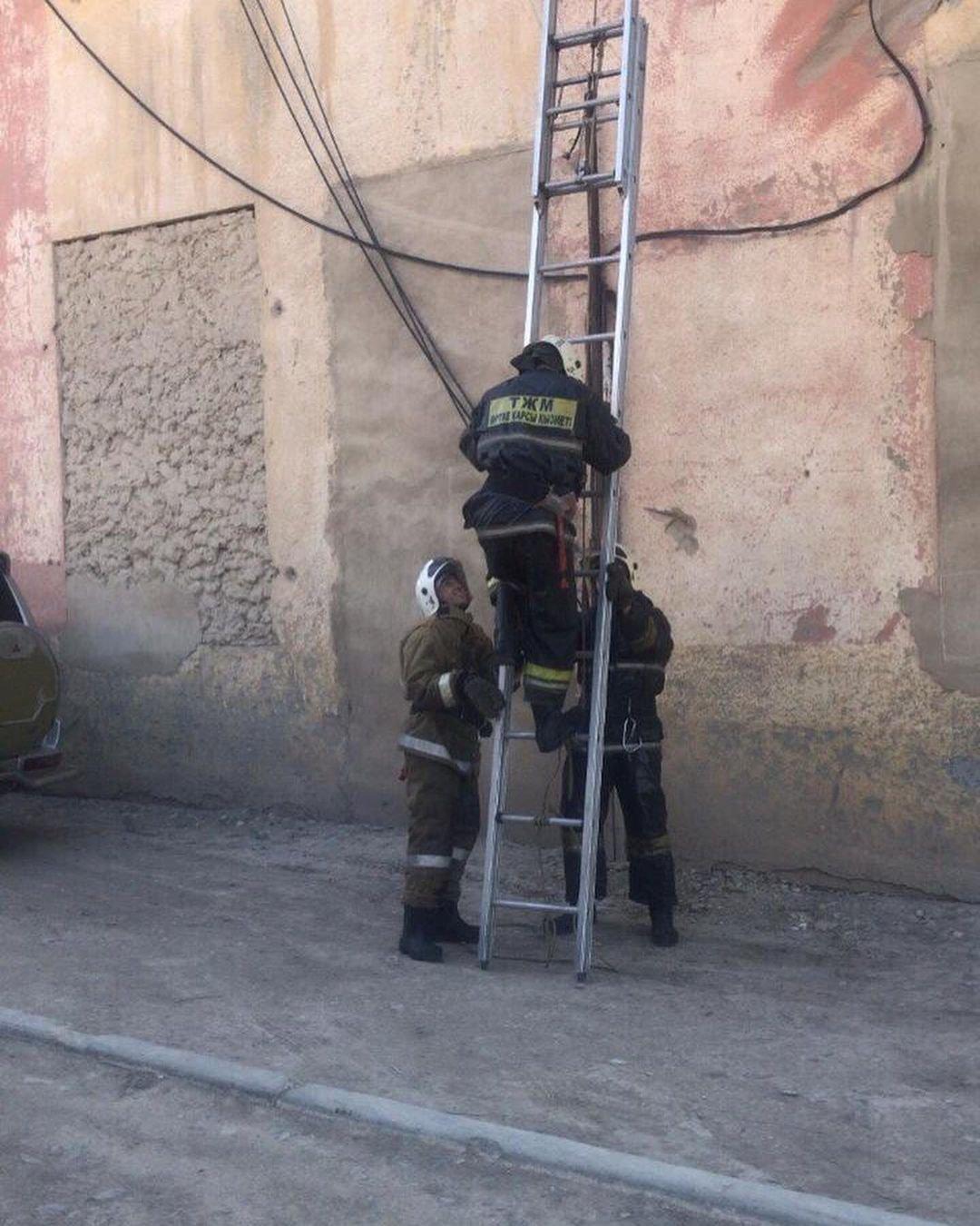 Спасение котёнка, ДЧС Карагандинской области